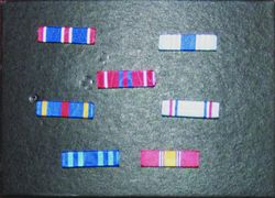 Family Receives Military Medals
